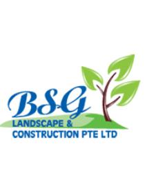 BSG Landscape